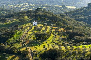 EU23MZW0368 Landscape near village Evoramonte in the Alentejo. Portugal