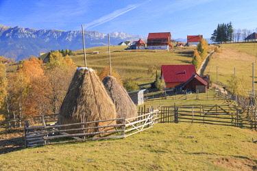 EU24EWI0118 Romania, Transylvania, Carpathian Mountains, Magura, Piatra Craiului National Park. Old farm house with hay stack.