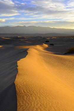 US05KOK0063 USA, California, Death Valley National Park, Mesquite Flat Sand Dunes at sunrise.