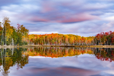 US23AJE0113 Red Jack Lake and sunrise reflection, Alger County, Upper Peninsula of Michigan.