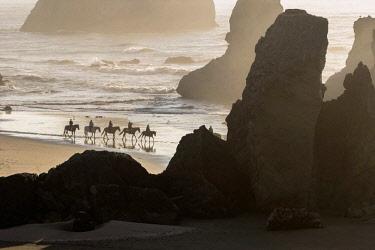 US38BJY0360 USA, Oregon, Bandon. Horseback riders on beach