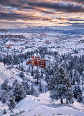 US45ACO0015 USA, Utah, Bryce Canyon National Park, Dawn after fresh snowfall