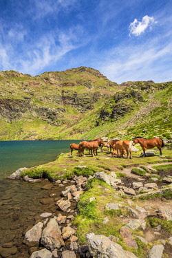 AND1023AW Mountain lake, Estanys de Tristaina, Arcalis, Andorra