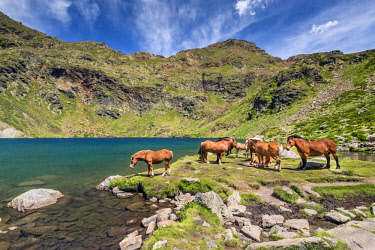 AND1024AW Mountain lake, Estanys de Tristaina, Arcalis, Andorra