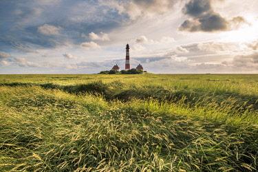 GER10276AWRF Westerhever lighthouse, Eiderstedt, North Frisia, Schleswig-Holstein, Germany.