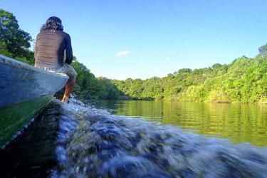 BRA3439AW Brazil, Brazilian Amazon, Amazonas state, Mamori district, Juma rainforest reserve