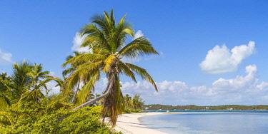 BA01451 Bahamas, Abaco Islands, Elbow Cay, Tihiti beach