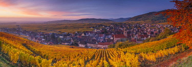 HMS2879344 France, Haut-Rhin, Alsace Wine Route, Riquewihr, labeled The Most Beautiful Villages of France