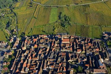 HMS2141481 France, Haut Rhin, Alsace Wine Road, Riquewihr village, labelled Les Plus Beaux Villages de France (The Most Beautiful Villages of France) and the vineyard (aerial view)
