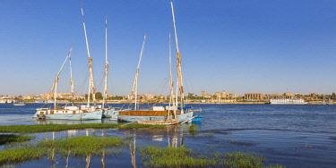 EG03460 Egypt, Luxor, River Nile and Luxor temple