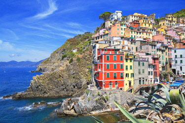ITA11144AW The colorful sea village of Riomaggiore, Cinque Terre, Liguria, Italy. Europe