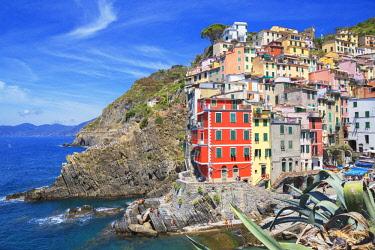 ITA11144AW The colorful sea village of Riomaggiore, Cinque Terre, Liguria, Italy. Europe