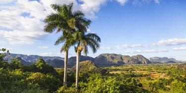 CB02743 Cuba, Pinar del Rio Province, Vinales, View of Vinales valley