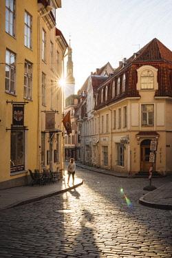 EST1250AW Pikk Street at dawn, Old Town, Tallinn, Estonia, Europe