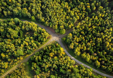 IBLBLO04250230 Crossroads in Arnsberg Forest, Meschede, Sauerland, North Rhine-Westphalia, Germany, Europe