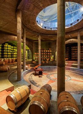 ARG2508AW Wine Cellar, Salentein Winery, Tunuyan Department, Mendoza Province, Argentina
