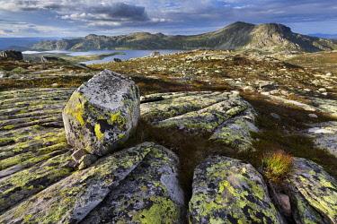 IBLGGR03836428 Heddersvatn Lake with the Heddersfjell plateau near Rjukan, Tinn, Telemark, Norway, Europe