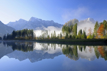 IBLHEI03884019 Almsee Lake, trees in autumn with reflections, Totes Gebirge mountain range, Almtal Valley, Salzkammergut, Upper Austria, Austria, Europe