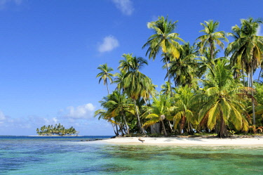 IBLESP03858266 Tropical island, beach with palm trees, Cayos los Grullos, San Blas Islands, Panama, Central America