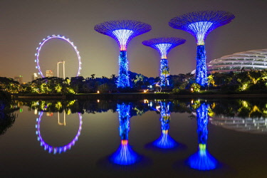 Supertrees, Gardens by the Bay reflecting in the water at night, Singapore, Asia