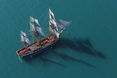 HMS2066236 France, Charente Maritime, Ars en Re, L'Hermione frigate, replica of the three masts which brought the marquis de Lafayette to America in 1780 (aerial view)
