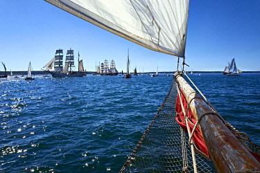 HMS2688147 France, Finistere, Brest, Les Fetes Maritimes 2016, sailing