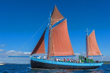 HMS2688951 France, Finistere, Brest, Brest 2016 International Maritime Festival, large gathering of traditional boats from around the world, every four years for a week, the Notre Dame de Rumengol is a gabare (f...