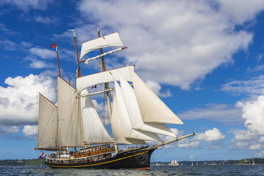 HMS2688974 France, Finistere, Brest, Brest 2016 International Maritime Festival, large gathering of traditional boats from around the world, every four years for a week, The Gulden Leeuw is a topsail schooner wi...