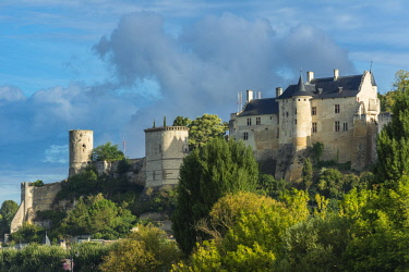 HMS2356657 France, Indre et Loire, Loire valley listed as World Heritage by UNESCO, Chinon, Royal Fortress of Chinon