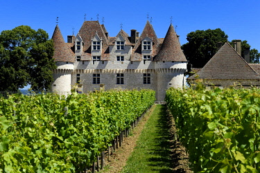 HMS2569156 France, Dordogne, Purple Perigord, the castle of Monbazillac among the vineyards