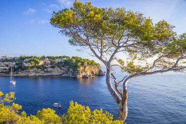 ES06269 Cala Portals Vells, Serra de Tramuntana, Mallorca (Majorca), Balearic Islands, Spain