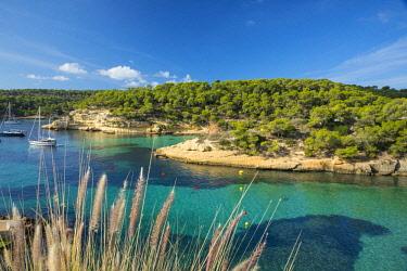 ES06275 Cala Portals Vells, Serra de Tramuntana, Mallorca (Majorca), Balearic Islands, Spain