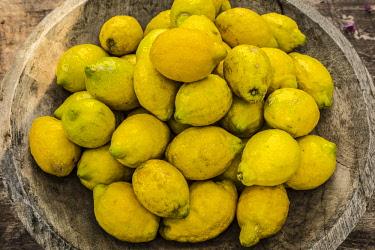 ES06288 Bowl of Lemons, Soller, Serra de Tramuntana, Mallorca (Majorca), Balearic Islands, Spain