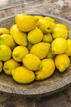 ES06289 Bowl of Lemons, Soller, Serra de Tramuntana, Mallorca (Majorca), Balearic Islands, Spain