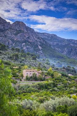 ES06351 Fornalutx, Serra de Tramuntana, Mallorca (Majorca), Balearic Islands, Spain