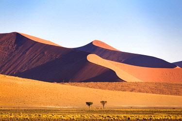 NAM6405AW Africa, Namibia, Namib Desert, Sossusvlei, dunes at sunrise