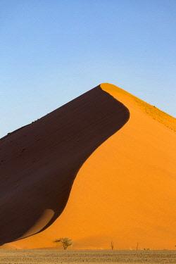 NAM6408AW Africa, Namibia, Namib Desert, Sossusvlei, dunes at sunrise