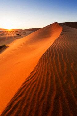 NAM6415AW Africa, Namibia, Namib Desert, Sossusvlei, Big daddy dune at sunrise