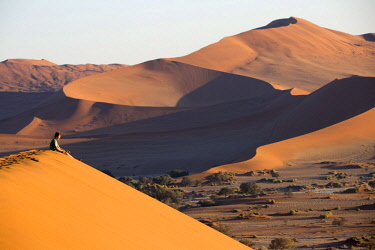 NAM6416AW Africa, Namibia, Namib Desert, Sossusvlei, dunes at sunrise