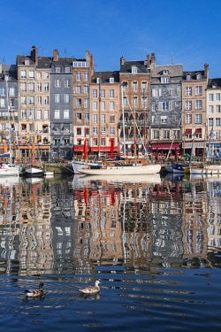HMS2611416 France, Calvados, Honfleur and its picturesque old harbour