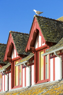 HMS2645824 France, manche, Bay of Mont Saint Michel listed as World heritage by UNESCO, detail of a half timbered house