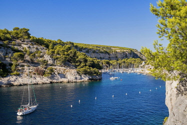 HMS2400780 France, Bouches du Rhone, Cassis, the Calanques National Park, the cove of Port Miou
