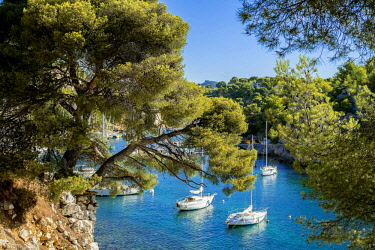 HMS2400783 France, Bouches du Rhone, Cassis, the Calanques National Park, the cove of Port Miou