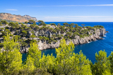 HMS2400785 France, Bouches du Rhone, Cassis, the Calanques National Park, the cove of Port Miou