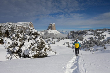HMS1855269 France, Isere, Parc Naturel Regional du Vercors (Vercors Natural Regional Park), Mont Aiguille (2086 m) from the high plateaus of Vercors, man practicing snowshoeing
