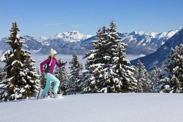 HMS1885352 France, Savoie, Parc Naturel Regional du Massif des Bauges (Regional Natural Park of the Massif des Bauges), Domaine des Aillons Margeriaz, woman practicing snowshoeing