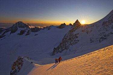 HMS2506896 France, Haute-Savoie, Chamonix, alpinist on the Migot ridge of the aiguille du Chardonnet(3824 m), Mont-Blanc range