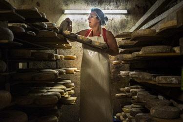 HMS2570006 France, Haute Savoie, Ballaison, La Bornandine farm, farm reblochon cheese AOP, ripening cellar