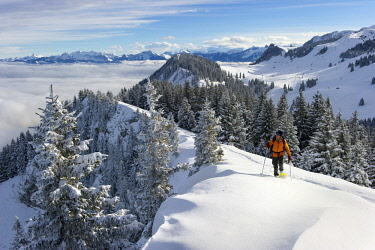 HMS3061129 France, Haute-Savoie, Thollon-les-Memises, snowshoe hiker walking on the Crête des Menises