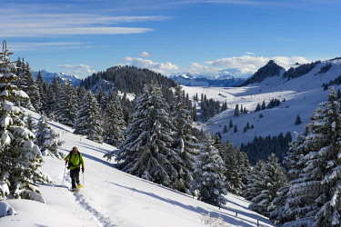 HMS3061131 France, Haute-Savoie, Thollon-les-Memises, snowshoe hiker walking on the Crête des Menises